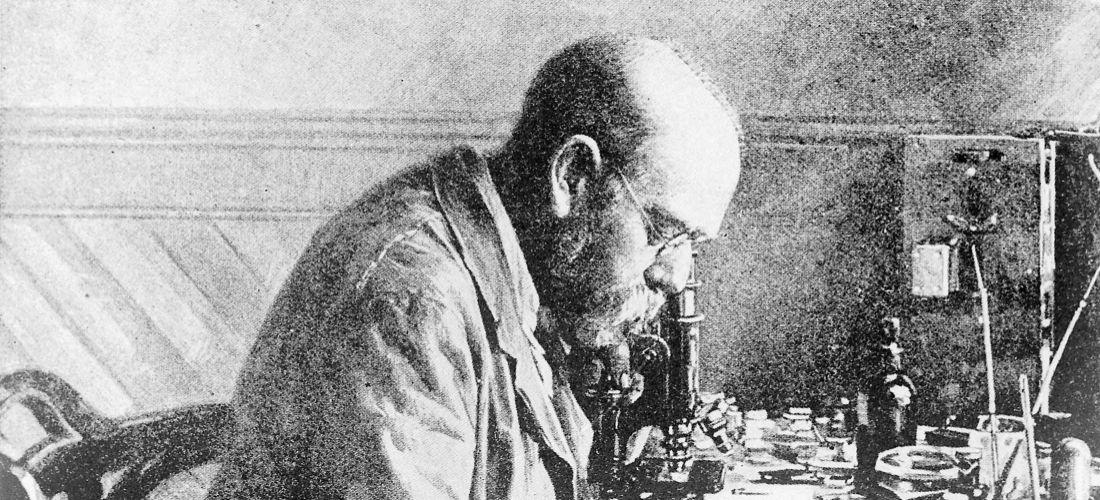 Das Foto zeigt eine Photogravur mit Gouache Farbe von Robert Koch in seinem Labor in Kimberley (Südafrika). Koch beugt sich über ein Mikroskop an seinem Schreibtisch.