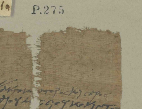 "Ausschreibung: Research Associate ""Colonized Manuscripts. The Provenance of Hamburg's Papyrus Collection"" – Salary Level 13 TV-L –"